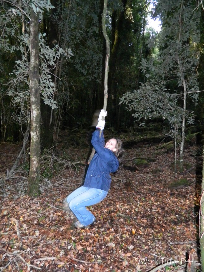 Mi instinto salvaje no se notó al lanzarme en liana en un bosque patagónico chileno. Siguiente imagen: Karla comiendo hojas secas del piso.