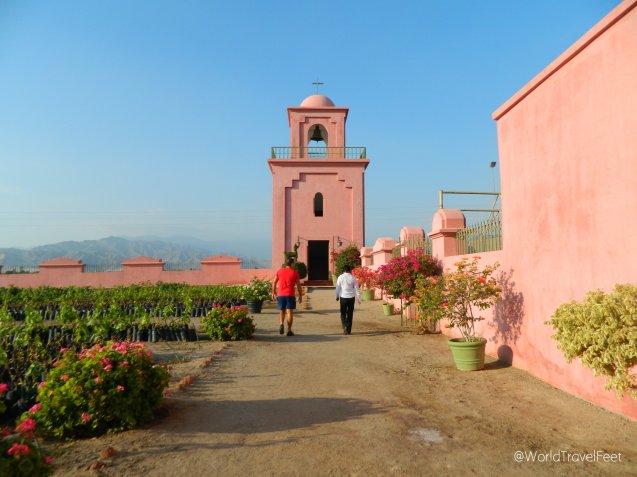 Caminando la Viña Tacama.