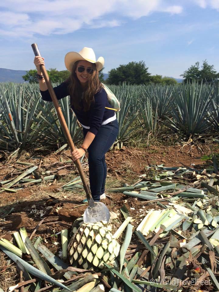 Karla Jimadora en Tequila sello
